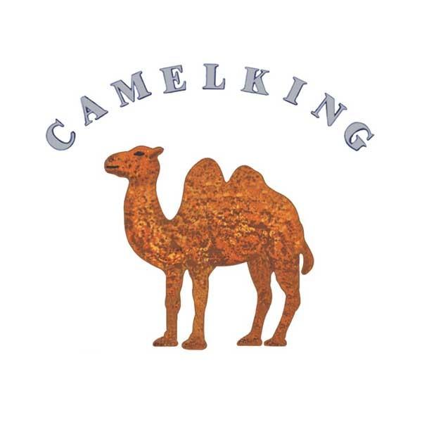 Camel HelloCig E-Liquid 60ml