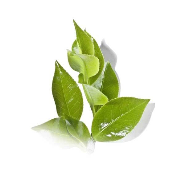Breath Freshener HelloCig E-Liquid 60ml