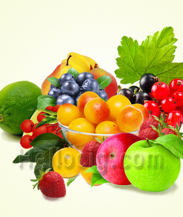E-LIQUID FRUITS
